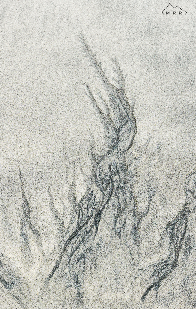 Árbol de arena